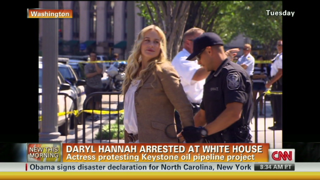 Darryl Hannah Arrest 640